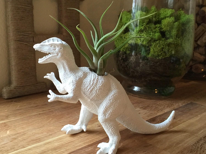 White Dinosaur Planter W Tillandsia Air Plant Room Office