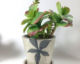 Minimalist Flower  Pot