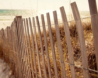 beach fence, sand fencing, beach photography, landscape photo, summer decor, beach cottage, sand dunes, dune grass