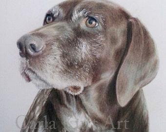 Pet Portrait, dog portrait 11 x 14 cat dog horse memorial, best etsy shop, top etsy seller best selling item