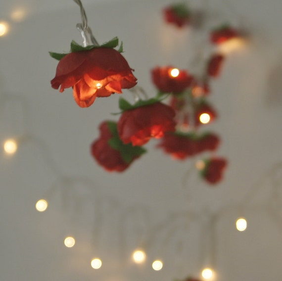 String Lights Short : 2015 Edition Christmas Red Rose Fairy Lights Pretty by PamelaAngus