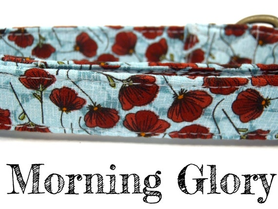 Morning Glory - Organic Cotton Dog Collar - Ice Blue Scarlet Red - All Antique Brass Hardware