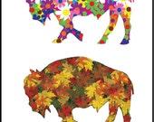 Buffalo Art - Buffalo Four Seasons - Buffalo A City for All Seasons Version 1 - Plak Mounted  Print -  Buffalo NY - Buffalo Gift