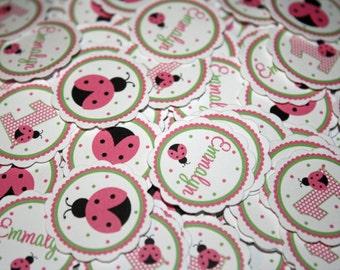 LADYBUG Pink Table Confetti / Ladybug Confetti / Ladybug Table Minis / Ladybug Pink Green Confetti / Ladybug Party Circles / Sweet Ladybug