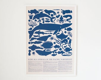 PRINT - Blue Sea Animals of the Pacific Northwest Poster