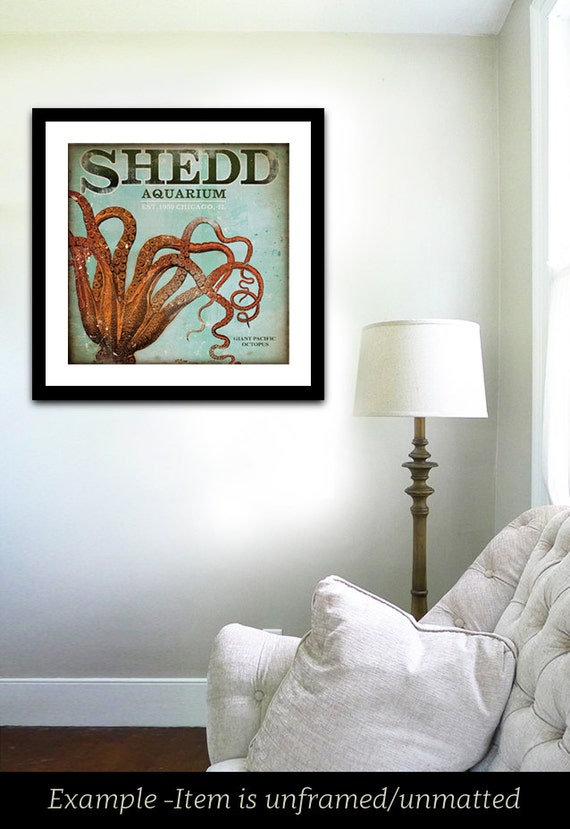Shedd Aquarium Octopus Chicago giclee archival print signed artists print by stephen fowler