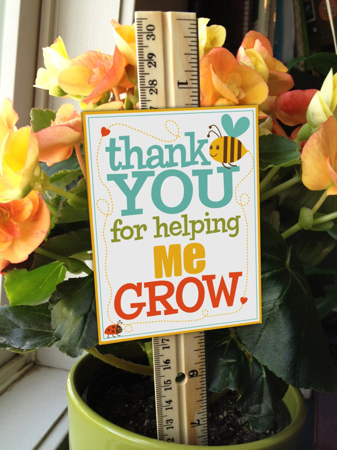 This is a photo of Bright Thank You for Helping Us Grow Printable