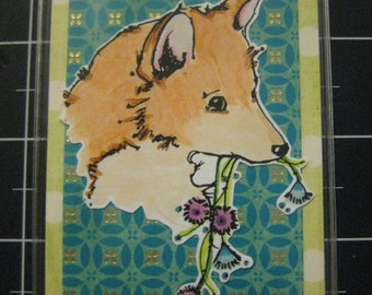 Sweet Shiba Inu, Laptop Bag or Dog Crate Tag, 100% goes to the current selected animal charity