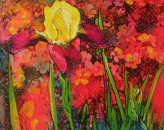 Spring Iris, 16x20 inches, Original Art, mixed media photograph, colorful art, gardens, spring #Iris art #Spring gardens #Gina Signore #art