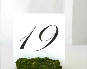 Table Number Holder + Moss Table Number Holders | Rustic chic wedding decor (3inch)- Set of 10