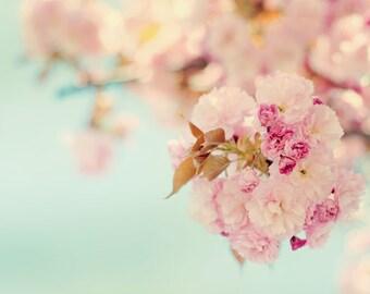 Flower Photograph, Pink, Blue, Spring Photo, Cherry Tree, Cherry Blossom, Nursery Art, Girls Room, Spring, Nature Photography, Fine Art