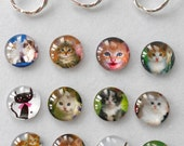 Magnetic or Clutch Pin Eyeglass/Reading Glasses/ Sunglasses/ ID Badge Holder  Cat.  Choice Of Type