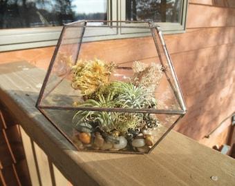 Simple Glass Terrarium
