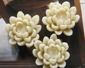 8 pcs 23mm - Fushia Lotus Cabochon (CA828-C2)