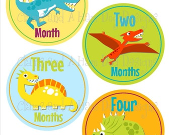 Monthly Milestone Stickers- Boys Jurassic Dinosaur monthly baby bodysuit stickers- Baby month stickers- Monthly baby stickers- BOY310