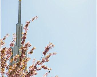 Seattle LDS Temple Fine Art Canvas wrap -Mormon -Washington -Angel Moroni -Spring Blossoms