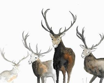 original watercolor painting of reindeer