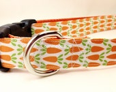Easter Dog Collar, Carrots Dog Collar, 1 inch wide, adjustable, quick release, martingale, chain, hybrid, heavy nylon