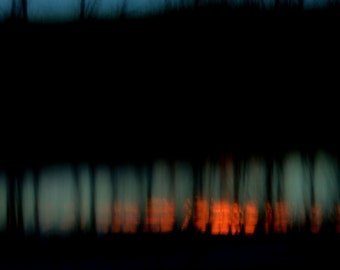 "Abstract landscape photography dark forest surreal trees blue black dark blur  - ""Fire and ice"" 8 x 10"