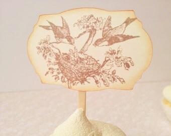 Bird Nest Cupcake Toppers Bird Family Baby Shower Wedding Food Picks  Set of 12