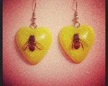 REAL Preserved Bee Glitter Earrings