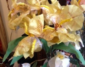 Rare Tall Life-size Yellow Iris Handmade Silk Velvet Flowers Millinery Decor