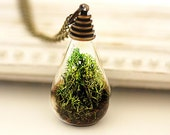 Spring Real Moss Necklace