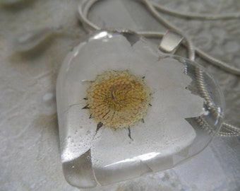 White Daisy Pressed Flower Glass Heart Pendant-Symbolizes Loyal Love-Nature's Wearable Art-Gifts Under 25