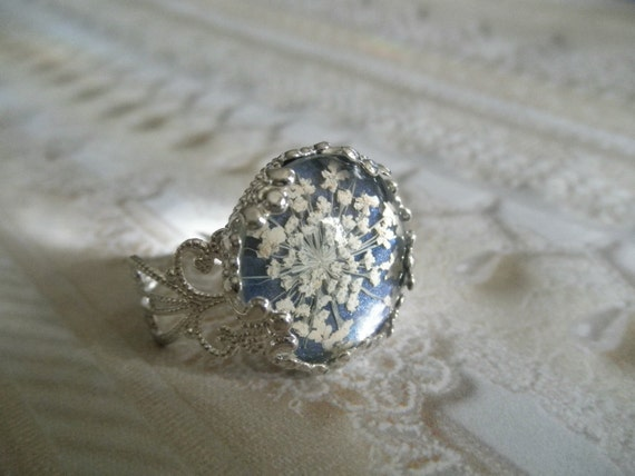 Real Flower Jewelry-Filigree Pressed Flower Ring Beneath Glass with Queen Anne's Lace Atop Midnight Blue Background, Symbolizes Peace