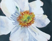 Just For You, an original 8 x 8 (20 x 20 cm) oil painting on canvas board by Yvonne Wagner. Flower. White. Anemone. Blumen.  Fleur. SALE.