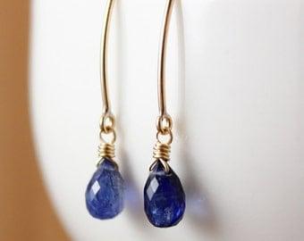 Blue Kyanite Earrings - Teardrop Earrings - Something Blue