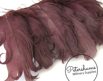 Curled Goose Nagorie Feather Fringe (around 8-10 feathers) for Millinery & Crafts - Wine