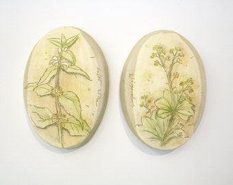 Hand painted botanical tiles. Woodland, herbs, medicinal, meadow, nettle, ladys mantle, chartreuse, yellow, oval.