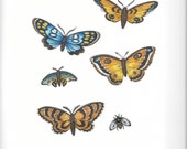 5 Brown & Blue Butterflies and a Bee Fabric Iron On Appliques