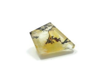 Genuine Dendritic Quartz 20x15x7mm Kite cut 9.35ct