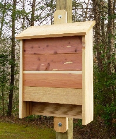 woodworking plans bat house illustrated with photos