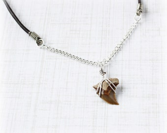 Shark Tooth Necklace Shark Tooth Pendant Fossil Necklace Leather Necklace Pendant Necklace Tribal Necklace Shark Tooth Jewelry Shark Jewelry