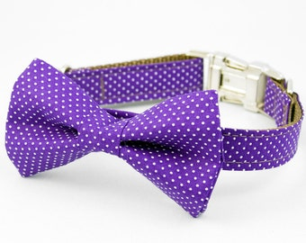 Bow Tie Dog Collar - Purple Pin Dot