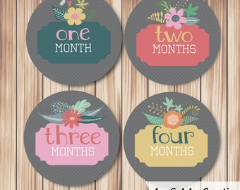 Baby Month Milestone stickers Flower Frame (set of 12)