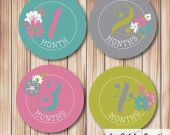 Baby Month Milestone stickers Muted Brights (set of 12)