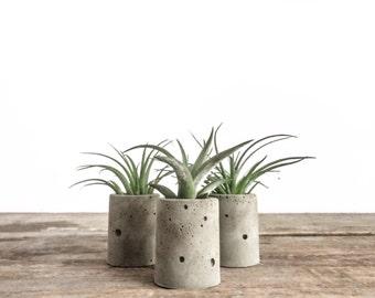 Set of 3 Mini Round Concrete Planters, Cement Planter, Wedding Favors, Cylindrical Planter, Succulents, Modern, Vase