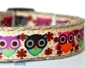 Whimsical Owl Dog Collar, Harvest Dog Collar, Fall Dog Collar, Pet Collar