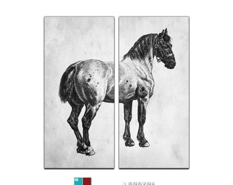Vintage Horse Diptych Canvas Giclee Reproduction - 24x26