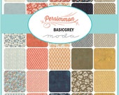 "Persimmon  Moda Quilt Fabric Basic Grey  Layer Cake 42 squares 10"""