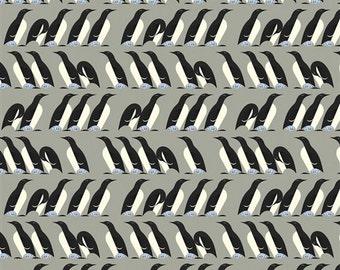Organic KNIT- Charley Harper Nurture - Murre