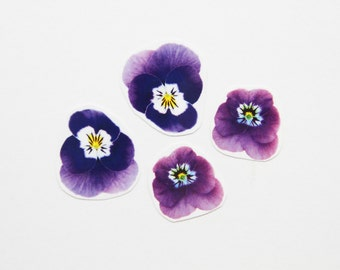 Twin Pansy Flower Temporary Tattoo Pack