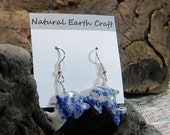 Blue and white sodalite dolphin earrings semiprecious stone jewelry packaged in a colorful gift bag 2563