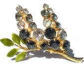 Vintage Hobe Rhinestone Brooch with Black and Crystal Rhinestones on Fruiting Gold Tone Leafy Vine Branch - Signed Vintage Costume Jewelry