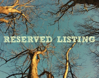 reserved listing for Sheri & Billy