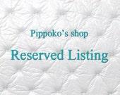 Reserved Listing for begemi